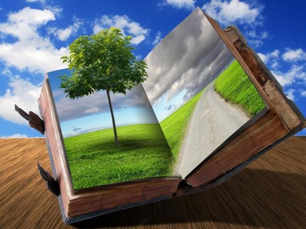 large.58da54cd58d95_treeinbook2.jpg.ba16ac52d5572e1ca929183e3bc1cd07.jpg