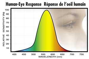 Plant-Human-Eye-Response_02.jpg