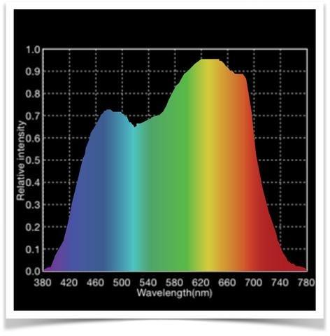 action-spectrum_large.jpg