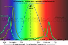 Blog-01-Chlorophyll-a-b-Compared-to-Lux-01.2.jpg