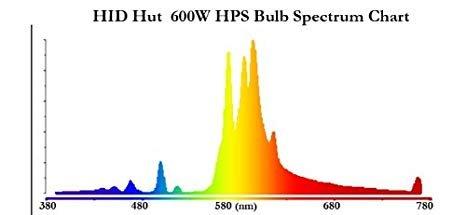 hps 600w spectrum.jpg
